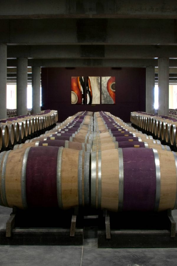 Glenelly Wine Estate- barrel room