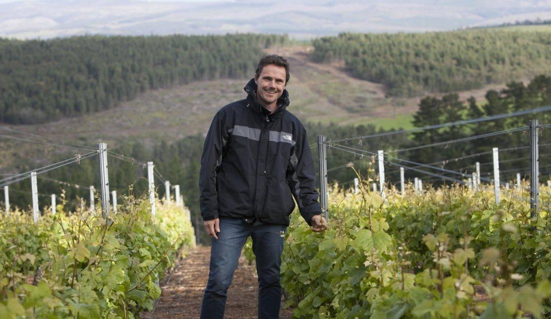 Oak Valley - wijngaard op hellingen Groenlandberg met de wijnmaker